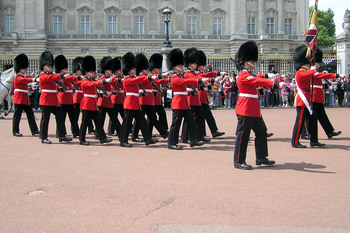 Queens.guard.buck.palace.arp[1].jpg